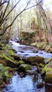 Río Troncoso, que sólo pasarán los del trail.